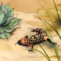 Monster Mash (gila monster)