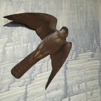 detail: Prairie Falcon