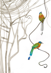 Painting of Blue-crowned Motmot by David Tomb